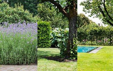 atmosphère dans votre jardin